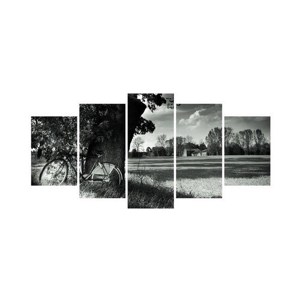 Vícedílný obraz Black&White no. 68, 100x50 cm