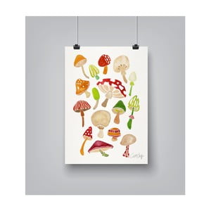 Plakát Americanflat Mushrooms, 30x42cm