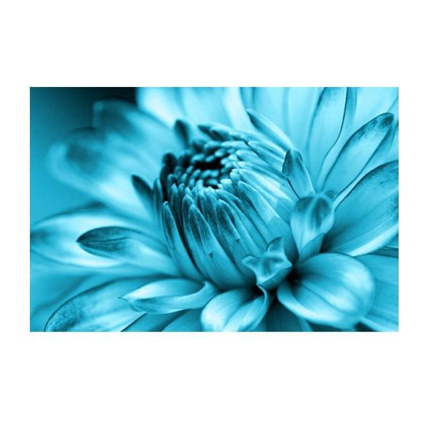 Obraz na skle Modrý květ, 40x60 cm
