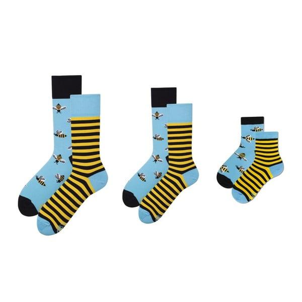 Rodinná sada 3 párů ponožek v dárkovém balení Many Mornings Bee Grand