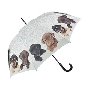 Holový deštník Von Lilienfeld Puppies Quarter