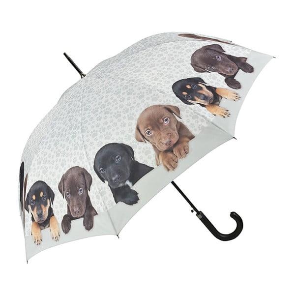 Puppies Quarter botesernyő - Von Lilienfeld