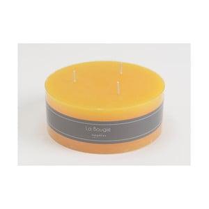 Svíčka 3Wick Yellow