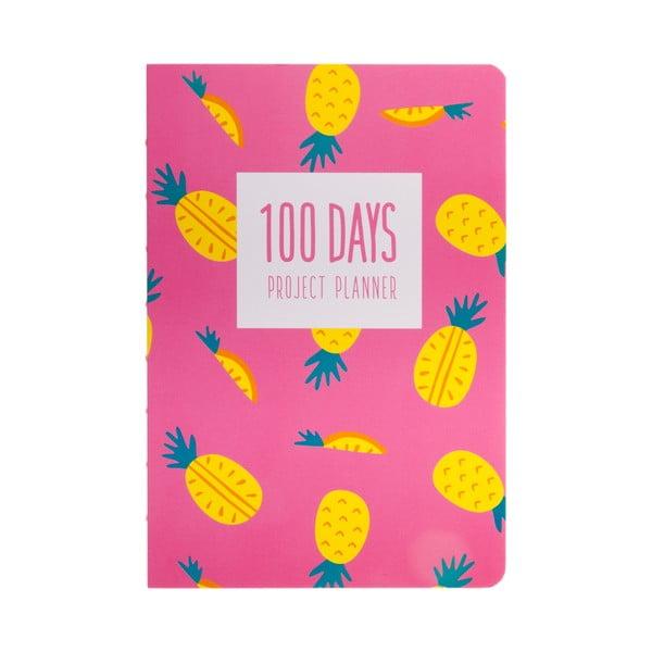 Plánovač Languo 100 Days Ananas