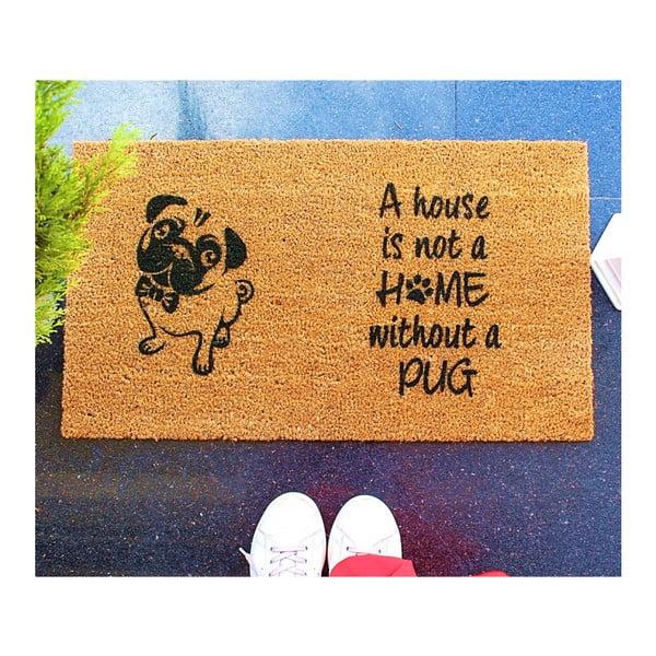Rohožka Doormat Pug, 70×40 cm