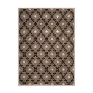 Hnědý koberec vhodný i na ven Safavieh Newburry, 160 x 231cm
