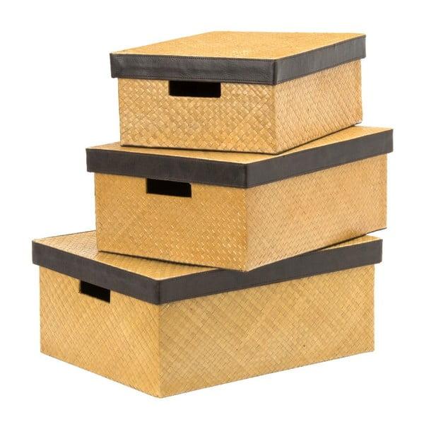 Set 3 boxů Pandanus