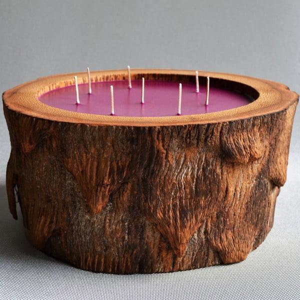 Palmová svíčka Legno s vůní white musk, 500 hodin hoření