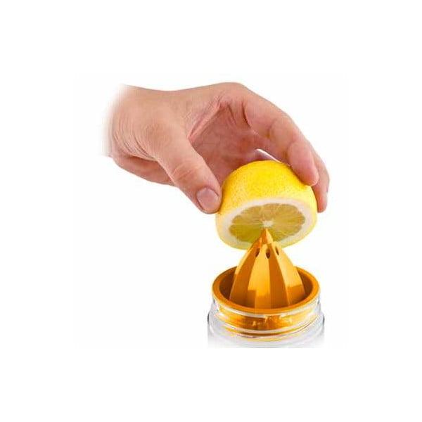 Citruszinger, lahev na vodu a citrusy, růžová