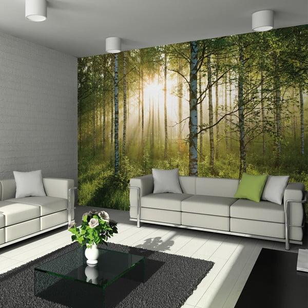 Poster de dimnesiuni mari Forest, 315x232 cm