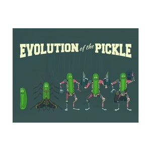 Obraz Pyramid International Rick and Morty Evolution of The Pickle, 60 x 80 cm