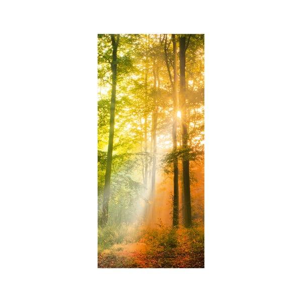 Samolepka na dveře Autumn Twilight