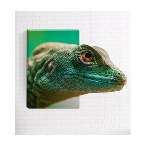 Nástěnný 3D obraz Mosticx Ještěr, 40 x 60 cm