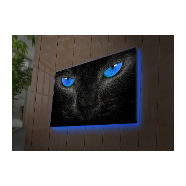 Podsvícený obraz Morrison, 70x45cm