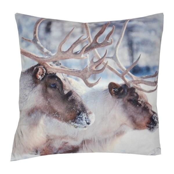Polštář Animals Deers, 42x42 cm