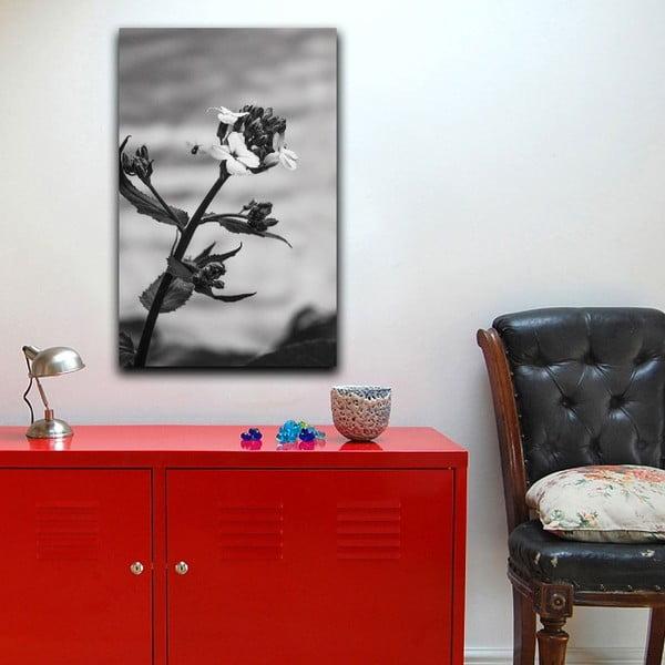 Obraz Black&White Flower,45x70cm