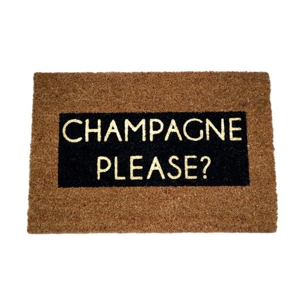 Rohožka z přírodního kokosového vlákna Artsy Doormats Champagne Glitter,40x60cm