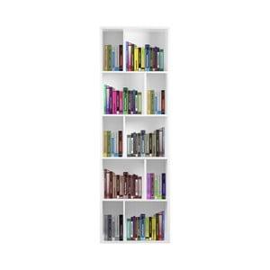 Bílá dřevěná knihovna Evergreen House Efran