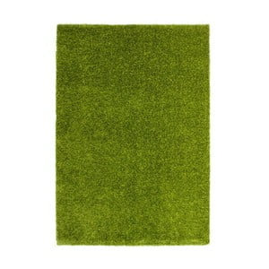 Koberec Harmonie 910 green, 120x170 cm