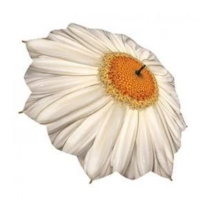 Deštník Flower Collection, daisy