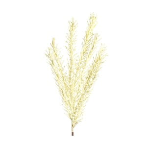 Umělá květina s krémovými květy Ixia Furaha, výška118cm