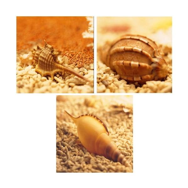 Set obrazů na skle Mořský svět, 20x20 cm, 3 ks