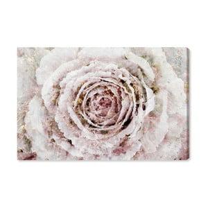 Obraz Oliver Gal Blush Winter Flower, 60x40cm
