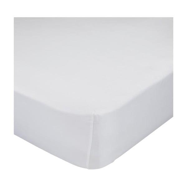 Bílé elastické prostěradlo HF Living Basic, 160x200cm
