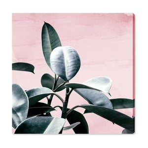Obraz Oliver Gal Plant Life Blush, 40x40cm