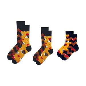 Rodinná sada 3 párů ponožek v dárkovém balení Many Mornings Apple Hedgehog Grand