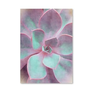 Plakát Americanflat Sweet Succulent, 30x42cm