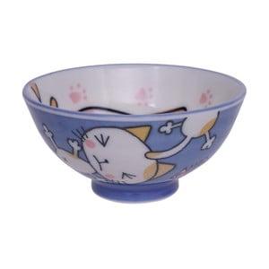 Modrá miska Tokyo Design Studio Cat, ø10,5cm