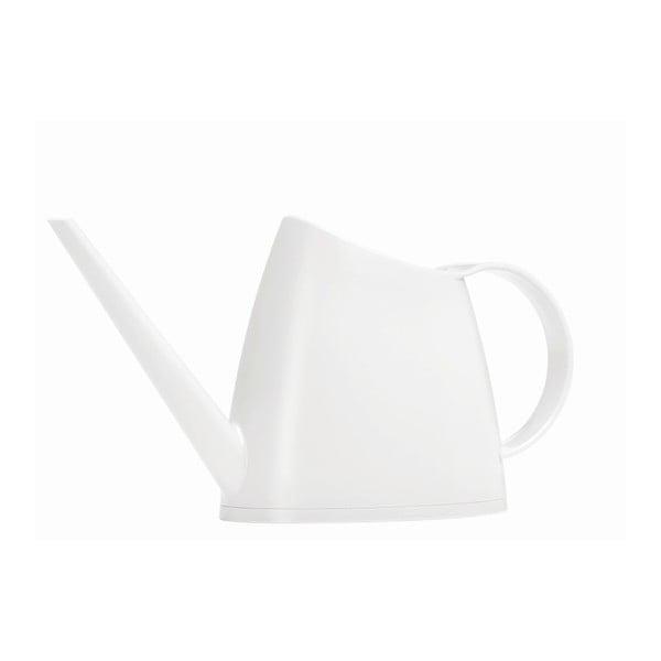 Konev Fuchsia White, 1,5 l