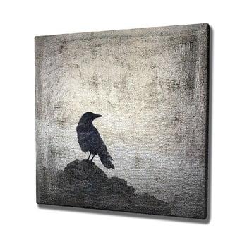 Tablou pe pânză Black Bird, 45 x 45 cm imagine