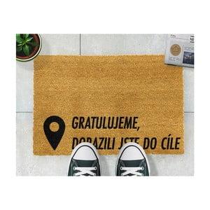 Rohožka Artsy Doormats Cíl,40x60cm