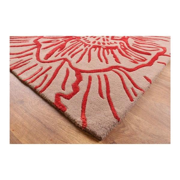 Vlněný koberec Liberty Beige Red 120x170 cm