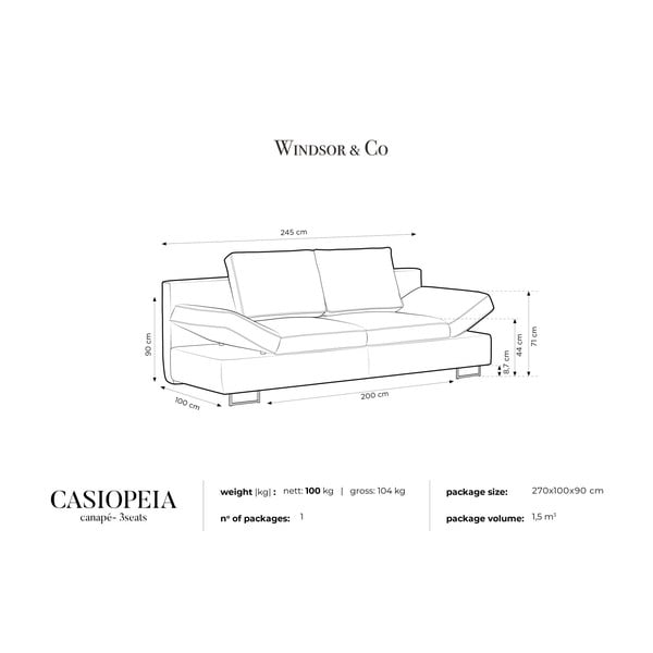 Černá dvojmístná rozkládací pohovka Windsor & Co Sofas Iota