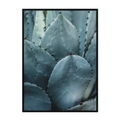 Poster Nord & Co Cactus, 40 x 50 cm