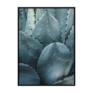 Plakát Nord & Co Cactus, 21 x 29 cm