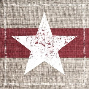 Balení 10 papírových ubrousků s vánočním motivem PPD Star Fashion Burgundy