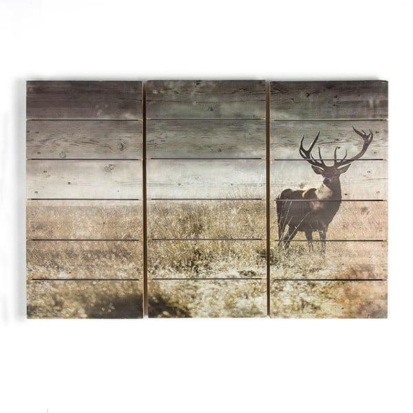 Vícedílný dřevěný obraz Graham & Brown Highland Stag
