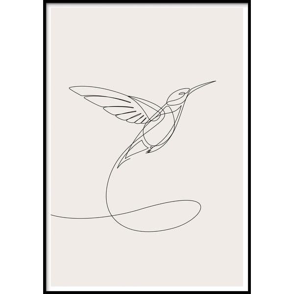 Nástěnný plakát v rámu SKETCHLINE/HUMMINGBIRD, 40x50cm