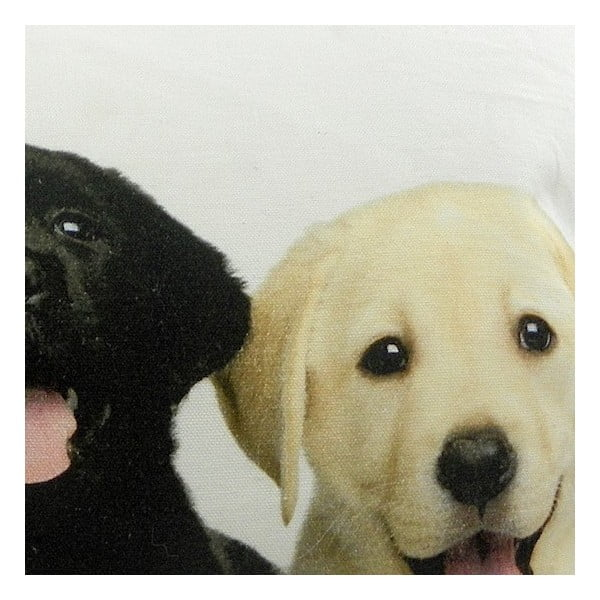 Polštář Mars&More Puppies Labrador, 50x35 cm