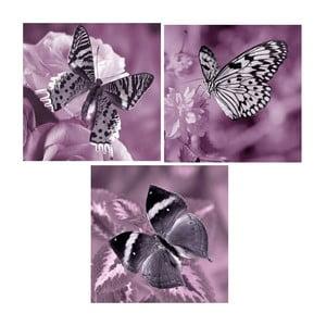Set obrazů na skle Motýlí,30x30 cm, 3 ks