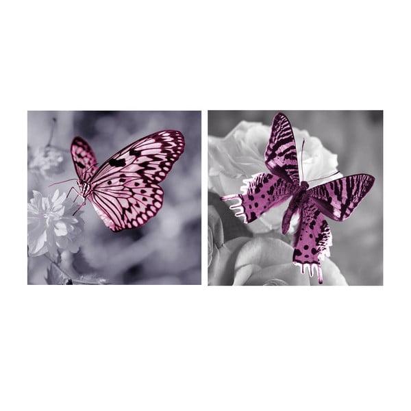 Set obrazů na skle Motýli, 20x20 cm, 2 ks