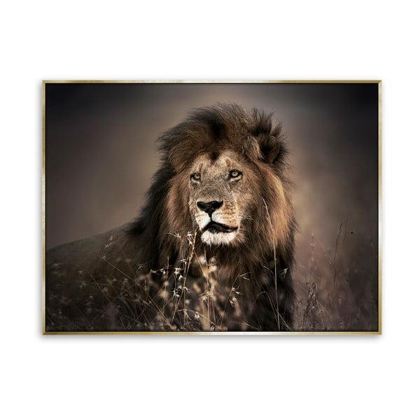 Obraz na płótnie Styler Golden Lion, 115x87 cm