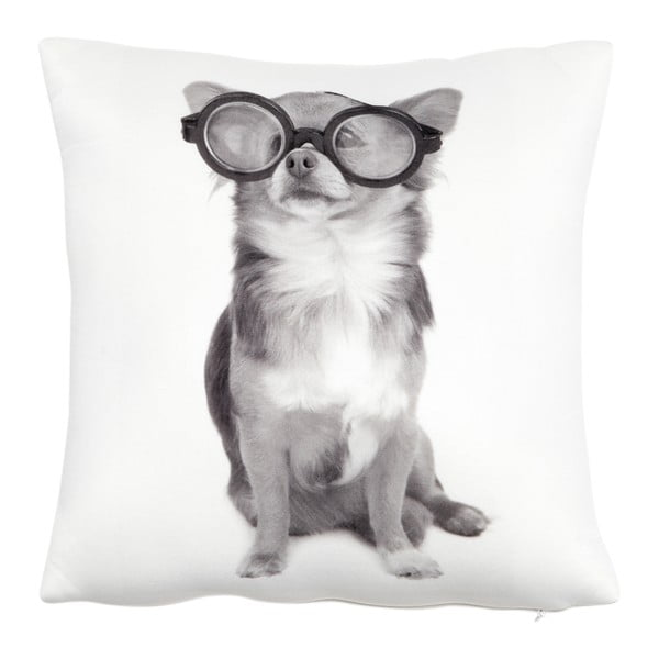 Polštář s náplní Dog with Glasses, 30x30 cm