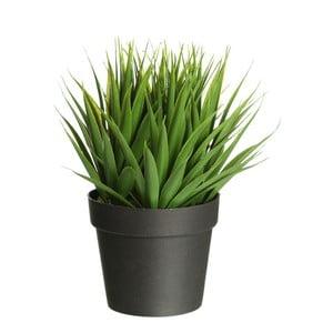 Umělá rostlina Ixia Palm Tree, výška19cm