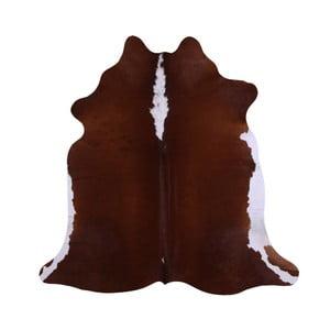 Pravá hovězí kůže Groate, 176x179cm