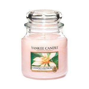 Vonná svíčka Yankee Candle Květ Magnólie Champaca, doba hoření 65 - 90 hodin